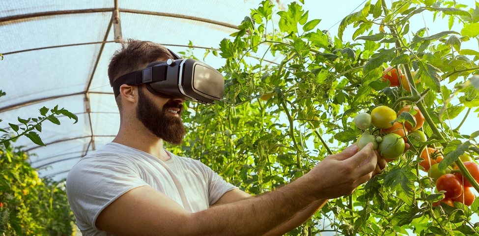smart-greenhouse